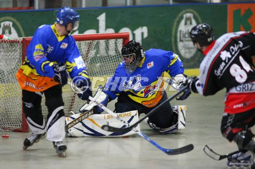 Inlinehockey IHD Bundesliga 2009 - Bad Nauheim Grizzlys vs. Baun