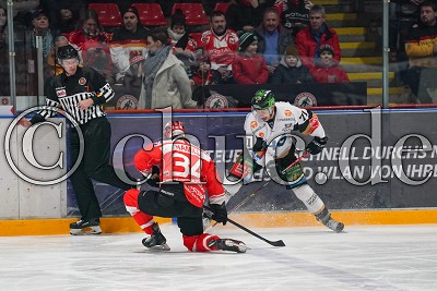 -71- Shawn O'Donnell (Ravensburg Towerstars) gegen -34- Zach Hamill (EC Bad Nauheim), in der DEL 2 - EC Bad Nauheim gegen Ravensburg Towerstars, Bad Nauheim, Colonel-Knight-Stadion, 21.02.20